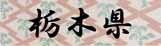 ロゴ13栃木県.jpg