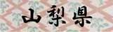 ロゴ15山梨県.jpg