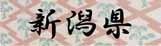 ロゴ16新潟県.jpg