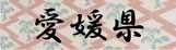 ロゴ38愛媛県.jpg