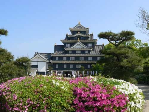 岡山城と花1.JPG