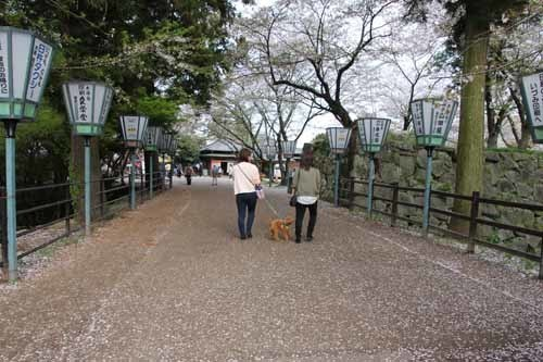 臼杵城12.JPG