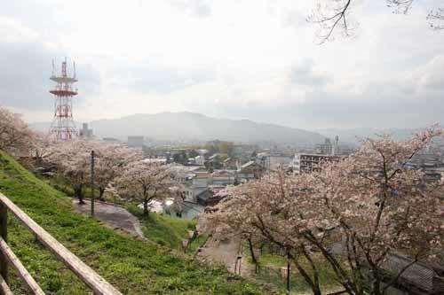 臼杵城14.JPG